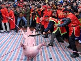 Lễ hội chém lợn Ném Thượng