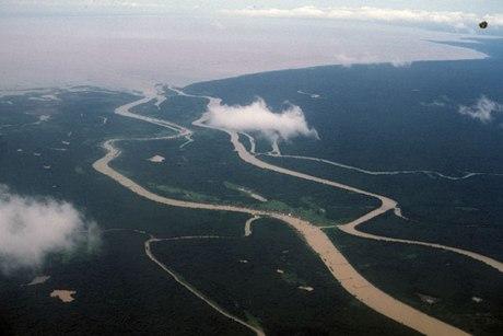 Sông Cửu Long. Ảnh: blogspot.com