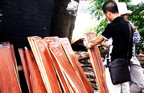 Một thương lái Trung Quốc đang ký tên mình vào các tấm gỗ đã chọn mua tại chợ gỗ làng Đồng Kỵ, Từ Sơn, Bắc Ninh. Ảnh: THỤY CHÂU