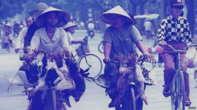 Chủ nghĩa lý lịch bắt đầu từ miền Bắc Việt Nam sau 1954