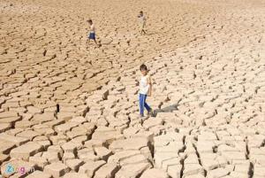 Đồng ruộng nứt toác, nước nhiễm mặn ở miền Tây. Ảnh: Zing