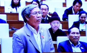 Đại biểu Lê Văn Lai phát biểu. Ảnh: PLTP