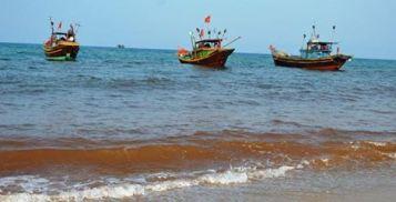 Và vệt nước đỏ kéo dài khiến lưới ngư dân sạch như được giặt bằng thuốc tẩy. Ảnh: internet