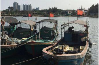Các láng giềng Trung Quốc cáo buộc Bắc Kinh quân sự hóa đội tàu cá. Ảnh: other