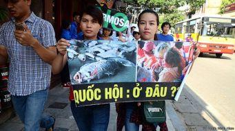 Những người biểu tình mong mỏi chính phủ công bố nguyên do gây cá chết. Ảnh: FB Trinh Minh Hien
