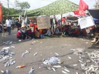 Người dân miền Trung xuống đường biểu tình phản đối Formosa. Ảnh: internet