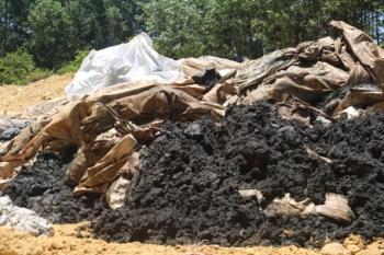 Chất thải Formosa chôn tại đất của Giám đốc công ty Môi trường