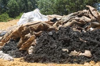 Formosa chôn chất thải ở trang trại của một sếp môi trường. Ảnh: internet