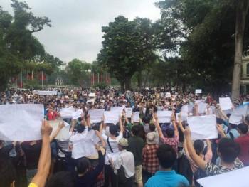 Người dân VN xuống đường phản đối Formosa gây ra thảm họa cá chết hàng loạt. Ảnh: internet