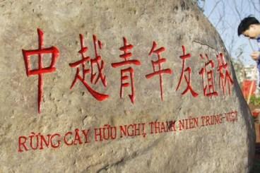 Rừng cây hữu nghị thanh niên Việt Trung. Ảnh: internet