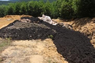 Bùn thải Formosa chứa chất độc xyanua được chôn lấp không đúng quy định.