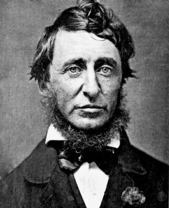 Tác giả Henry David Thoreau