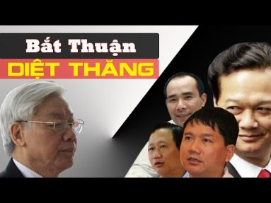TBT Nguyễn Phú Trọng đả hổ diệt ruồi. Nguồn: internet