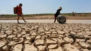 Hạn hán xảy ra trên diện rộng ở các tỉnh Tây Nguyên năm 2013. Nguồn: báo Bình Định.