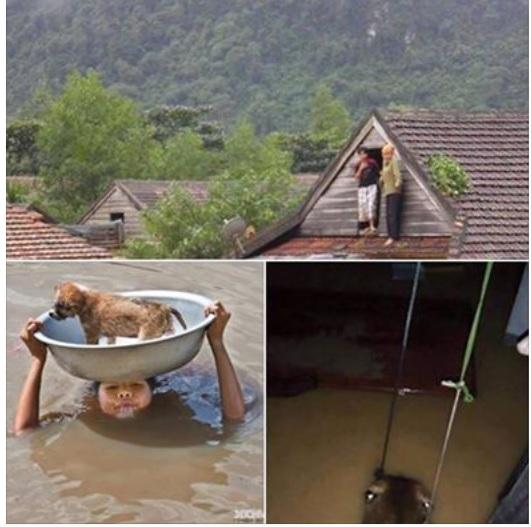 Hình ảnh người dân miền Trung trong cơn lũ. Nguồn: Facebook