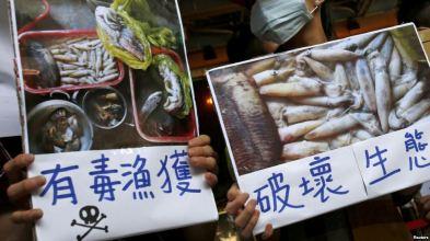 Người biểu tình kêu gọp tập đoàn Formosa điều tra và tự nguyện công bố kết luận của riêng mình về vụ cá chết hàng loạt ở Việt Nam, tại Đài Bắc, Đài Loan, ngày 17 tháng 6, 2016. Ảnh: Reuters.