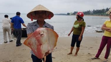 Sự cố ô nhiễm biển miền trung khiến hàng chục ngàn ngư dân mất việc.